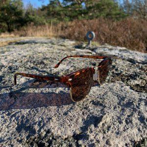 Bruna solglasögon med brunt glas